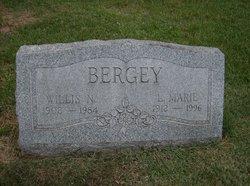 L. Marie <I>Snyder</I> Bergey