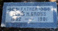 Louis H Gross