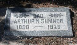 Arthur Nathaniel Sumner