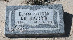 Eugene Freeman Dillingham