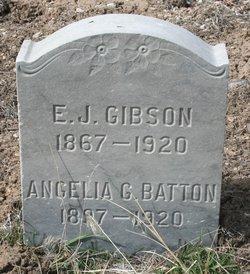 E J Gibson