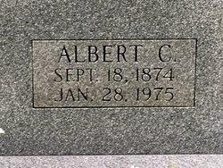 Albert Clay Arnold