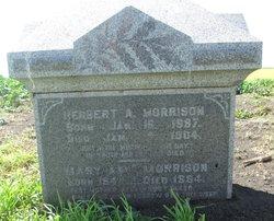 Herbert A. Morrison