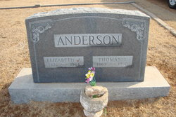 Elizabeth Anna <I>Cooper</I> Anderson