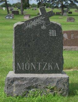 Waldemar Carl Montzka
