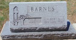 Albert Edward Barnes
