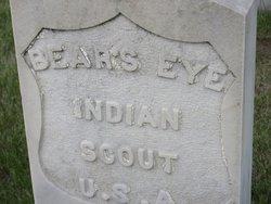 Bear's Eye