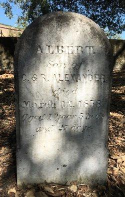 Albert T Alexander