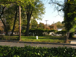 Shealey Cemetery