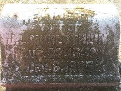 Henrietta M. <I>Fonville</I> McGlothlin