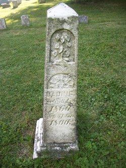 Albert E. C. Bading