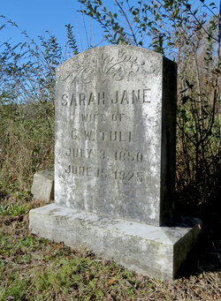 Sarah Jane <I>Dix</I> Tull