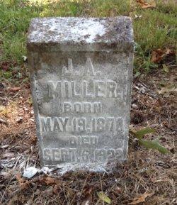 J. A. Miller