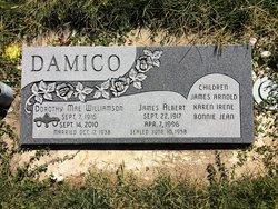 James Albert Damico