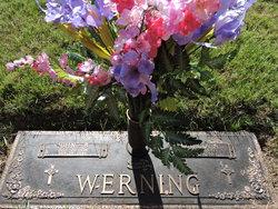Dr John B. Werning