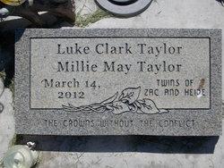 Luke Clark Taylor