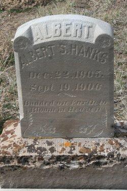 Albert S Shanks