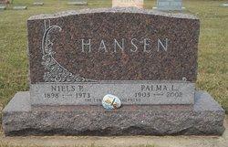 Niels P. Hansen