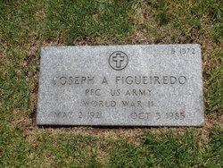 Joseph A Figueiredo