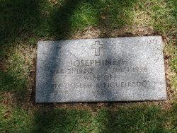 Josephine H Figueiredo