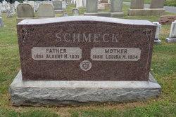 Albert H Schmeck