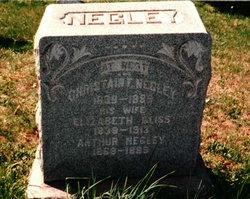 Elizabeth <I>Geiss</I> Negley