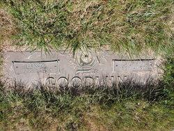 Leroy Goodwin