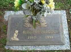 Herbert Godsey