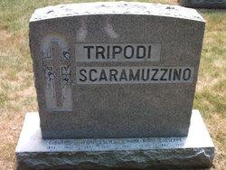 "Giovanni ""John"" Tripodi"