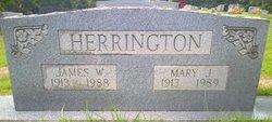 Mary Echols <I>Jones</I> Herrington