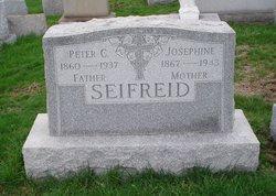 Peter C Seifried