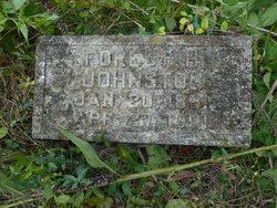 Forest H Johnston