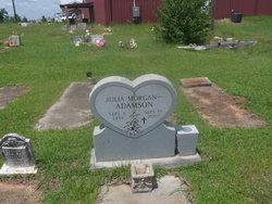Julia <I>Morgan</I> Adamson