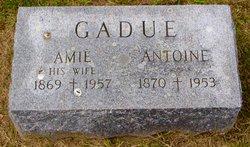 Amie Gadue