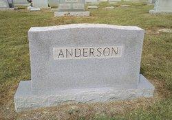 Arthur Newton Anderson, Sr