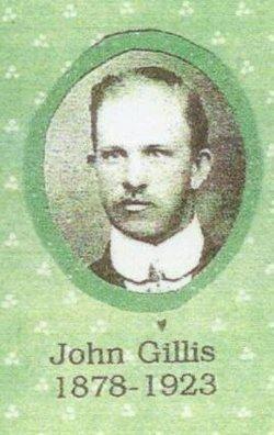 John Gillis Kitchen