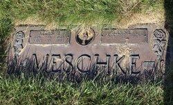 Allyne A Meschke