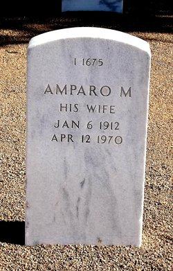 Amparo M Figueroa