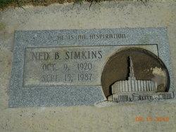 Ned Byrd Simkins