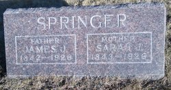 Sarah J. <I>Shields</I> Springer