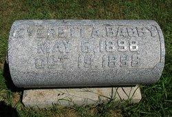 Everett A Bagby