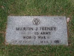 Martin J Feeney