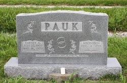 Earney A Pauk