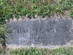 Michael Llewellyn Keay