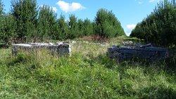 Reuben Moore Cemetery
