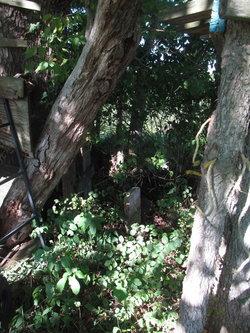 Riggle Cemetery
