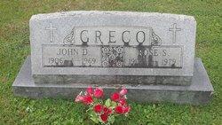 Rosa <I>Sagace</I> Greco