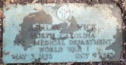 Ashley V Vick