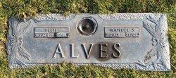 """Aartje """"Ellie"""" <I>Van Doorn</I> Alves"""