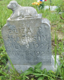 Eliza P Anderson